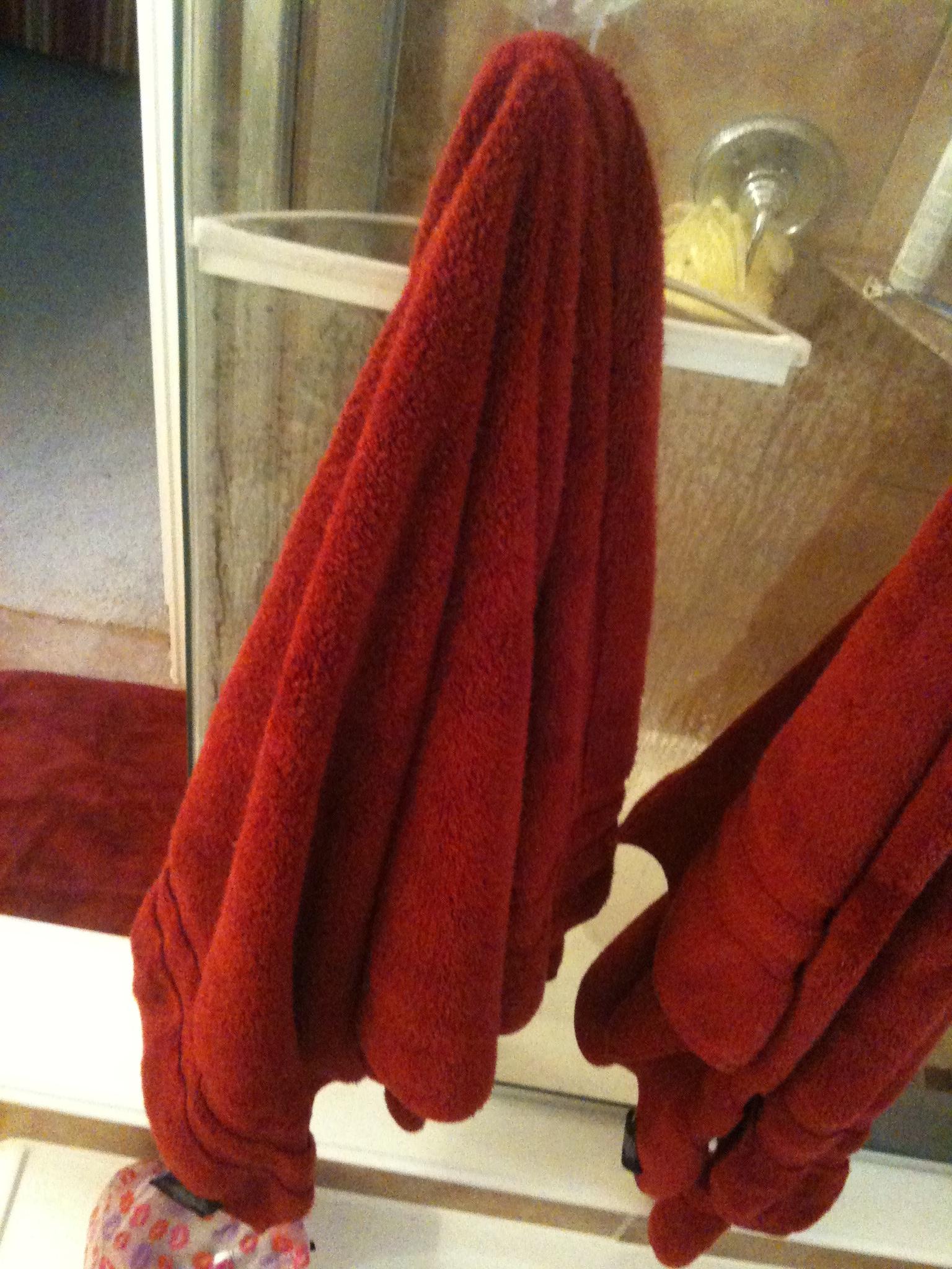 Ode to My Wife's Bath Towel